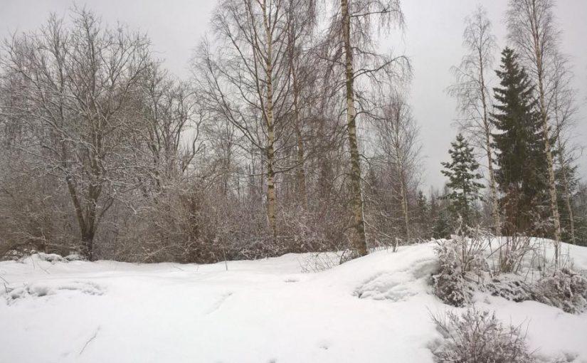 Lunta tulvillaan…